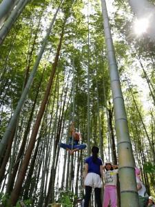 竹に登ったり・・・