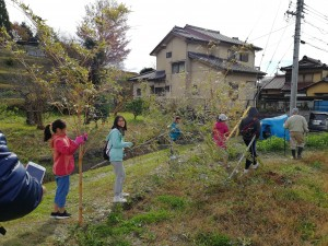 里山♥子ども保育園では、自分たちで畑に豆を植えました。